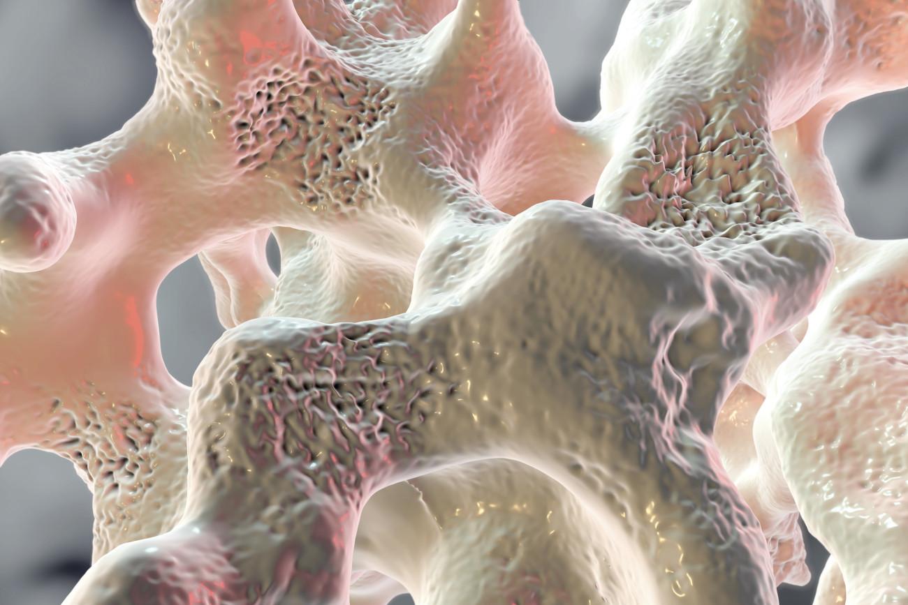 Ottobre - Test Osteopenia e Osteoporosi
