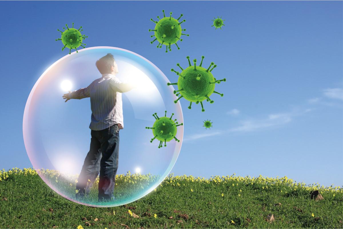 Le piante immunostimolanti