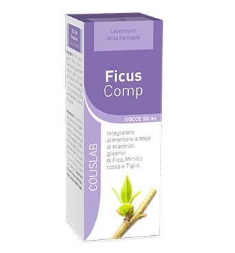 FicusComp gocce